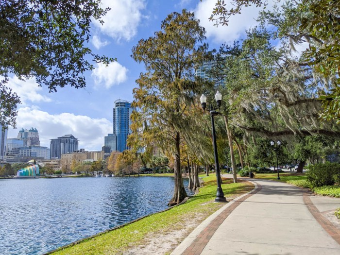 large lake surrounded by trees with Orlando skyline in the background