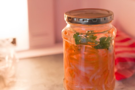 150704 - Pickled Carrots - 006