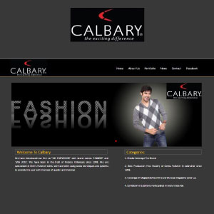 Portfolio website designing calibary