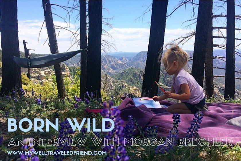 The Born Wild Project www.mywelltraveledfriend.com