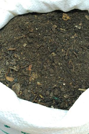Concime Biologico - Humus di Lombrico Rosso della California