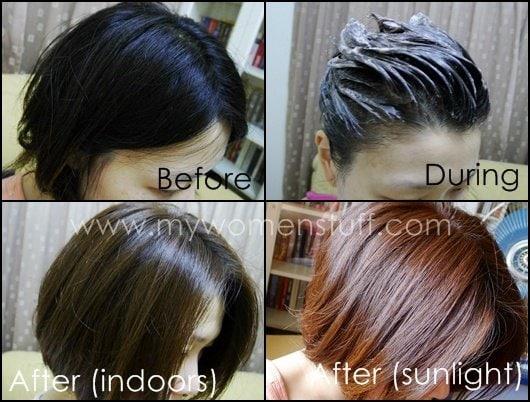 Liese Hair Dye Chestnut Brown 18101 ENEWS