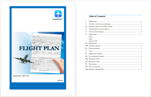 Flight Plan Template  Microsoft Word Templates