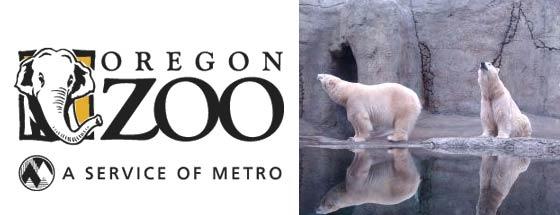 Zoo Lights Pt Defiance