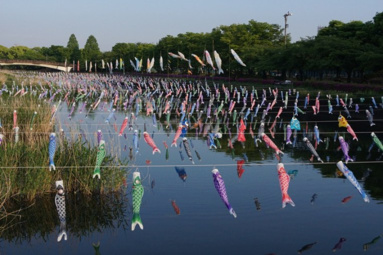 Record-breaking Number of Koi-no-bori flags in Tatebayashi (2015)