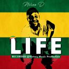 Nelson D - Life