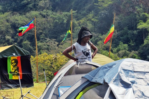 Reggae Camping