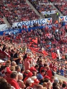 Mainz2014_10