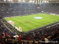 Abstieg2014_Schalke_FCN_2