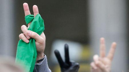 """Die """"Grüne Revolution"""": Vor den Demonstrationen standen die Träume."""