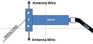 Vertical Dipole - The Balun is hung at a right angle