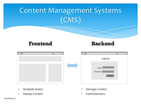 Basic CMS-Based Website Elements