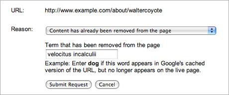 Google URL Removal web tool, controla los snippets de Google
