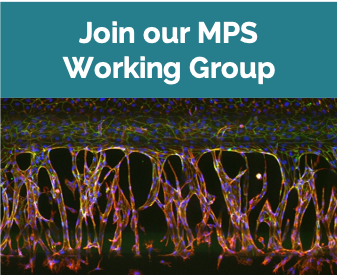 Join our MPS Working Group