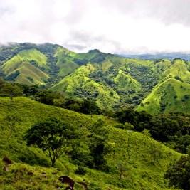 Monteverde in Costa Rica (Foto: António Jorge Nunes | Hemera | Thinkstock)