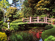 japanese gardens kildare ireland Naas Town.com - Restaurants in Naas, Pubs in Naas, Bed and