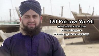 Dil Pukare Ya Ali By ahmed raza qadri