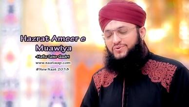 Hazrat Ameer e Muawiya By Hafiz Tahir Qadri