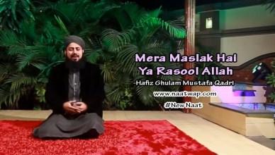 Mera Maslak Hai Ya Rasool Allah By Ghulam Mustafa Qadri