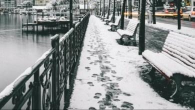 صورة وكالة الطقس الدنماركية: تغير حالة الطقس مع نهاية الأسبوع