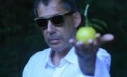 Arnaldo Antunes, incontri e disincontri tra rock e samba