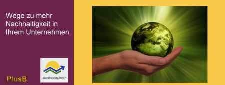 Wege zu mehr Nachhaltigkeit in Ihrem Unternehmen - PlusB Consulting