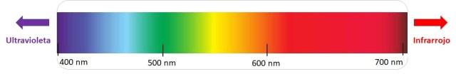 Espectro de luz visible entre los 400 y los 700 nanómetros.