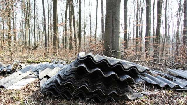 Im Wald entsorgte Eternitplatten (Symbolbild)