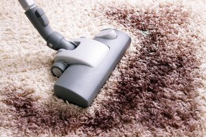6 Signs It Could Be Time for New Carpeting