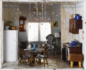 Water Damage 101 for Homeowners in Hunt Valley