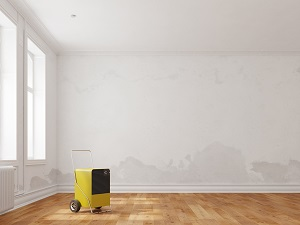 Dealing with Water Damage to Your Floors in Aberdeen