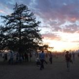 Austin Psych Fest 2014
