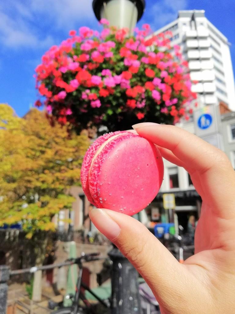 Cheesecake macarons van Australian aan de grachten van Utrecht