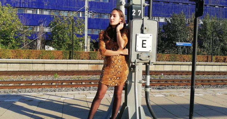 Outfit: The Snake Print Dress