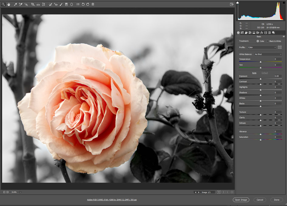 Photo Editing Tips & Tricks