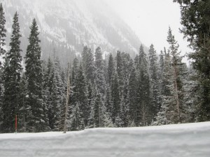 A late winter wonderland near Washington Pass in the Northern Cascades