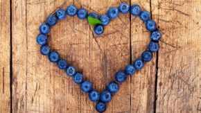 amour des bleuets