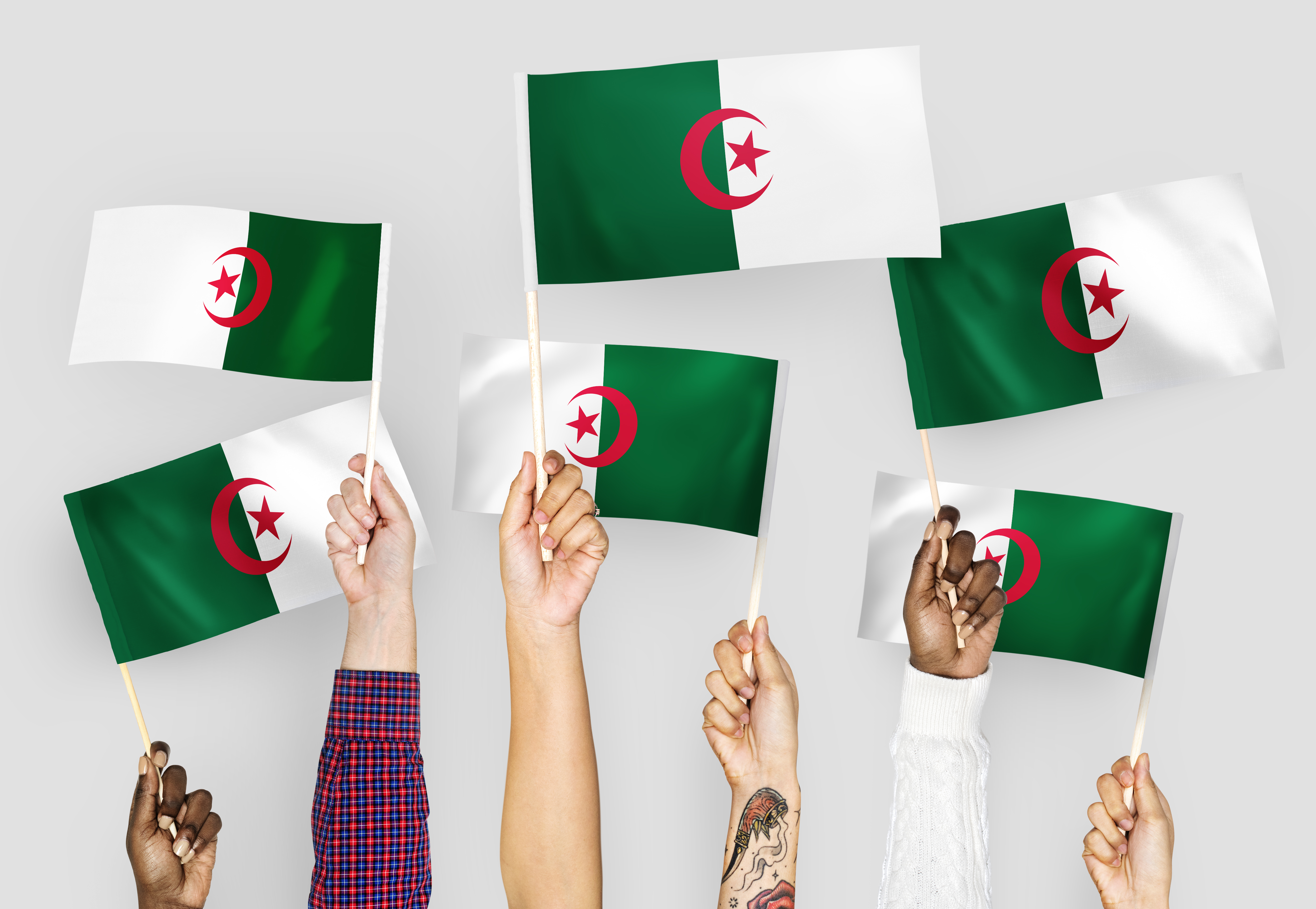Algerian Feminism and the Struggle for Women's Equality