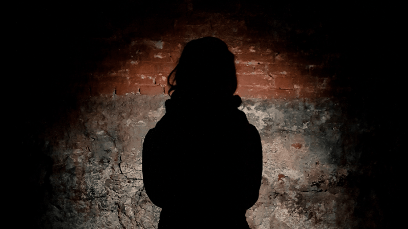 slovenia rape law