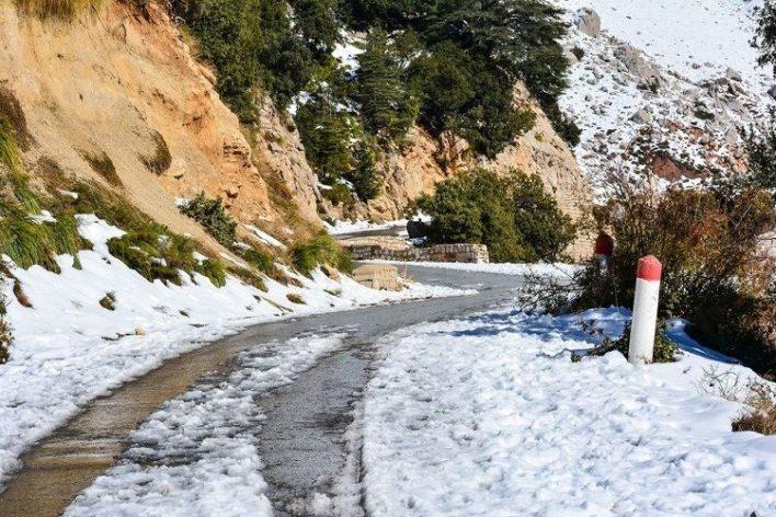 نشرية خاصة الثلوج الجزائر