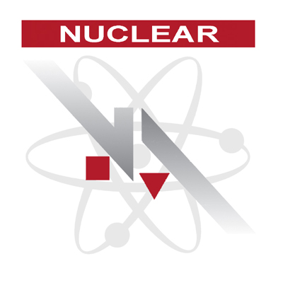 NA Engineering Associates Inc. Steps onto the International Nuclear Stage