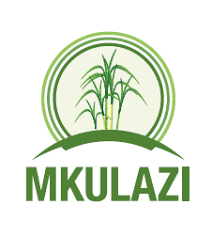 2 Job Opportunities at Mkulazi Holding Company Ltd, Record Assistants