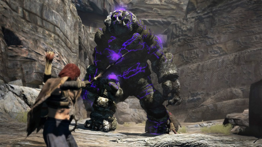 Dragons Dogma Is Coming To PS4 And Xbox One NAG