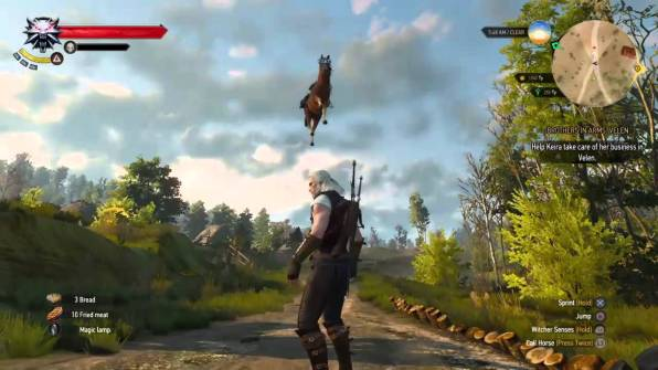 The Witcher Roach 06