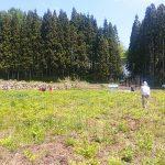 NPO法人小田切オアシスが開催する「アマワラビ収穫ツアー」に行ってきました。