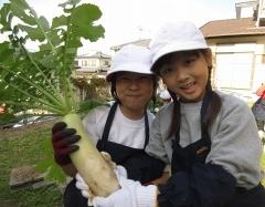 元気野菜づくり2019