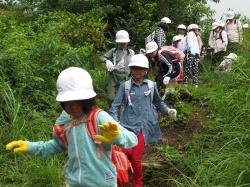 自然体験活動「沢登り」2020
