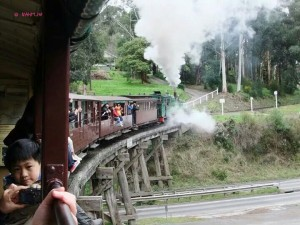 Puffing Billy - Over the Bridge