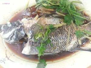 Hong Kee Restaurant - Steamed Fish in Cantonese Styled