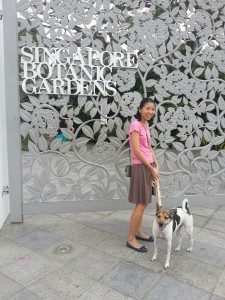 Pet Staycation at The Regent - At The Singapore Botanic Garden